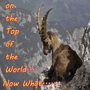 On the Top of the World.... Now What......