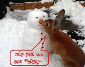 Why you are not Talking.....